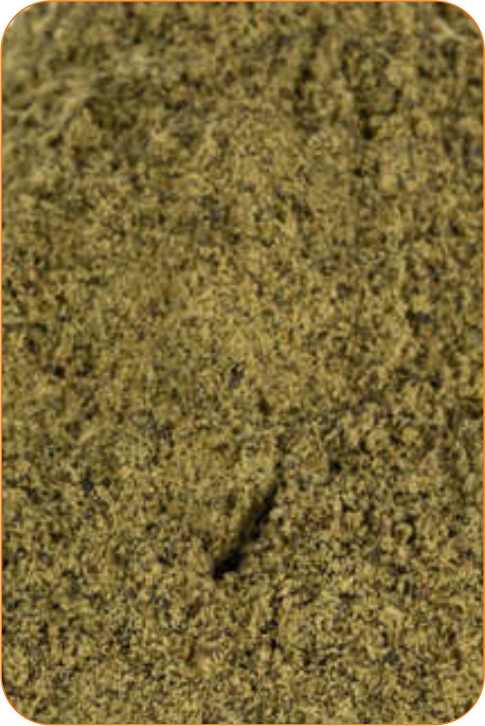 Konopné semínko 0,5 kg / MLETÉ